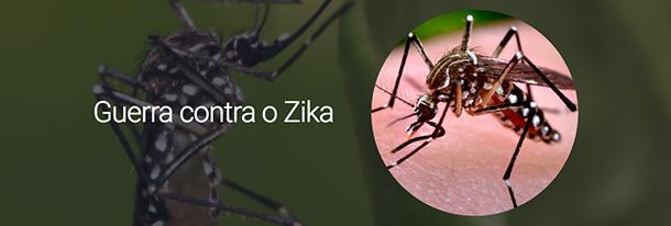 Guerra contra o Zika